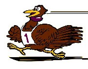 drumstick-dash-turkey-2013